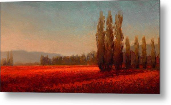 Across The Tulip Field - Horizontal Landscape Metal Print