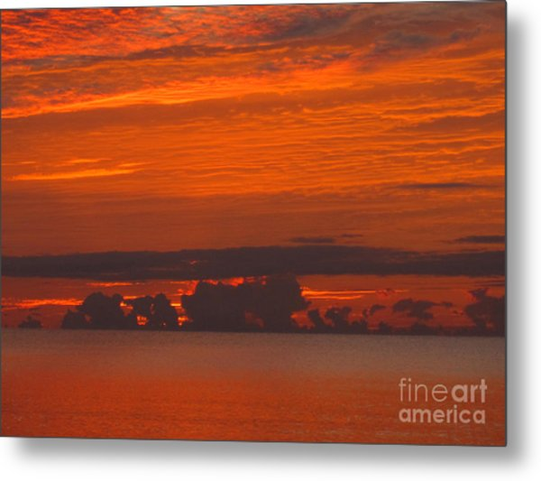 Adrift In Paradise Metal Print by Addie Hocynec