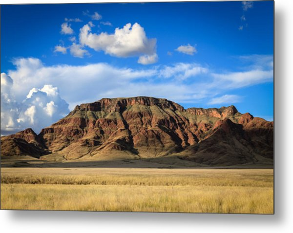 Aferican Grass And Mountain In Sossusvlei Metal Print