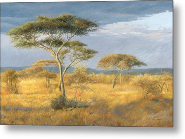 African Landscape Metal Print