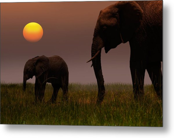 African Mother Elephant And Baby - Metal Print by 1001slide