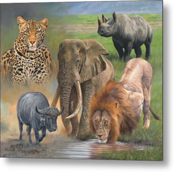 Africa's Big Five Metal Print