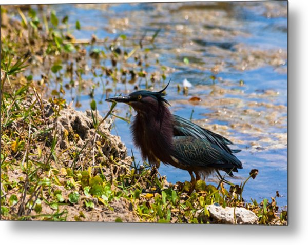 After Fishing Metal Print