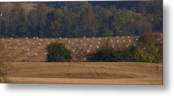 After The Harvest Metal Print by Doug Hubbard