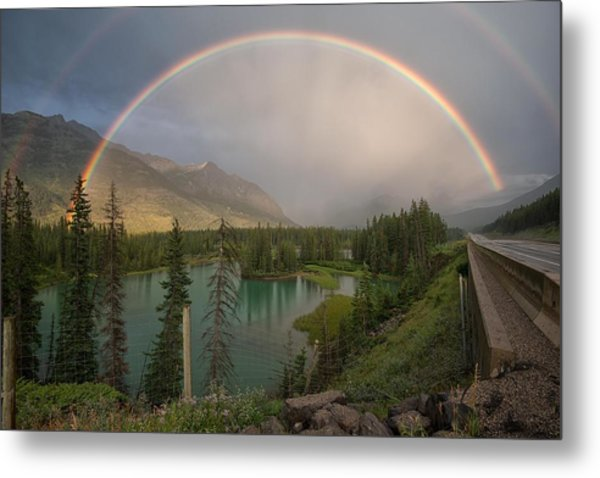 Metal Print featuring the photograph After The Rain by Darlene Bushue
