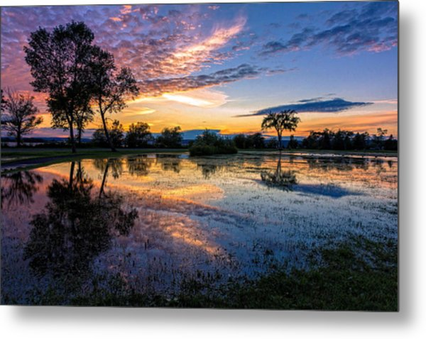 After The Rains Metal Print