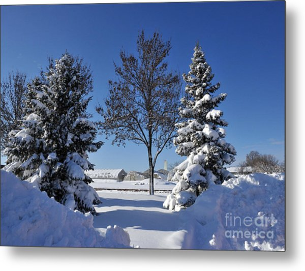 After The Snow Metal Print by Graham Taylor