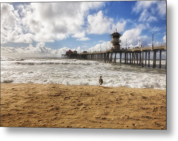 After Winter Storm At Pier Metal Print