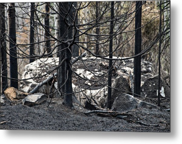 Aftermath Metal Print