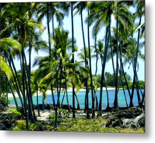 Afternoon At Kakaha Kai Metal Print