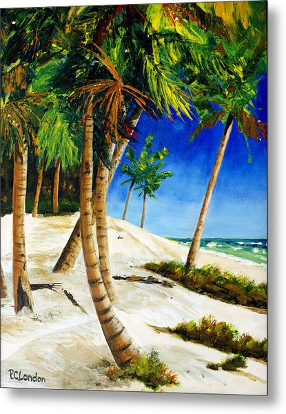 Afternoon Beach Walk Metal Print