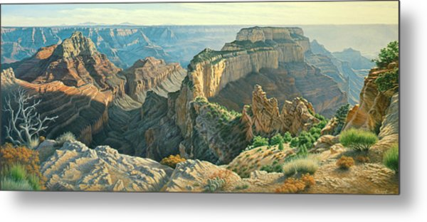 Afternoon-north Rim Metal Print