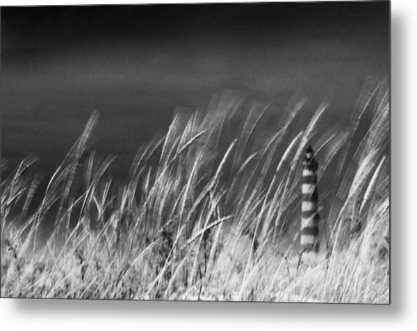 Against The Wind Metal Print by Rui Correia