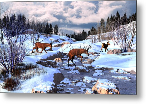 Against The Winter Chill Metal Print