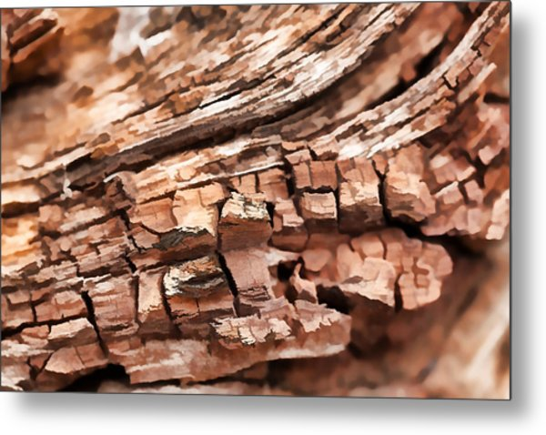 Aged Beyond Perfection Metal Print