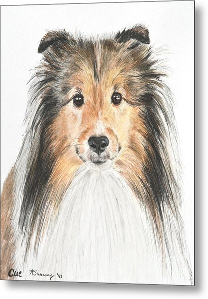 Agility Dog Sheltie In Pastel Metal Print