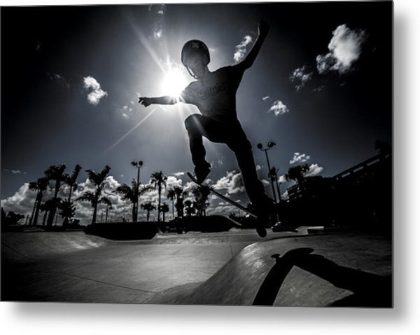 Airbound Metal Print