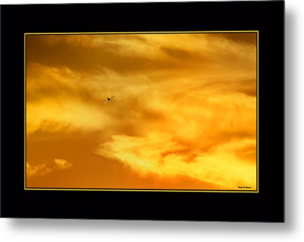 Airplane To The Sun Metal Print
