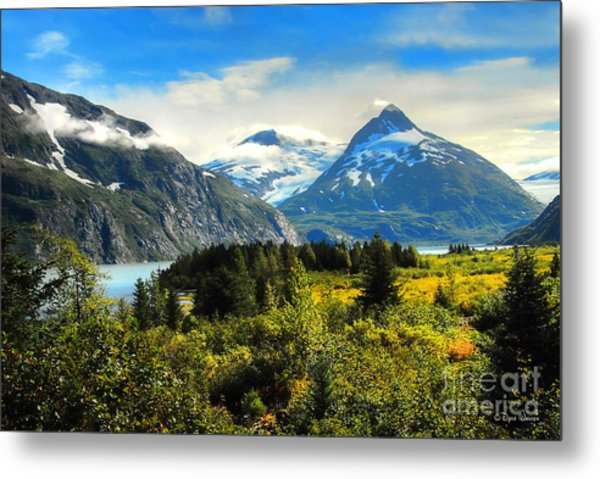 Alaska In All Her Glory Metal Print