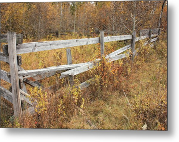 Alberta Ranchlands - Abandoned Corral Metal Print