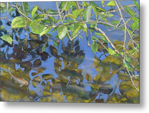 Alder Leaves And Koi Metal Print