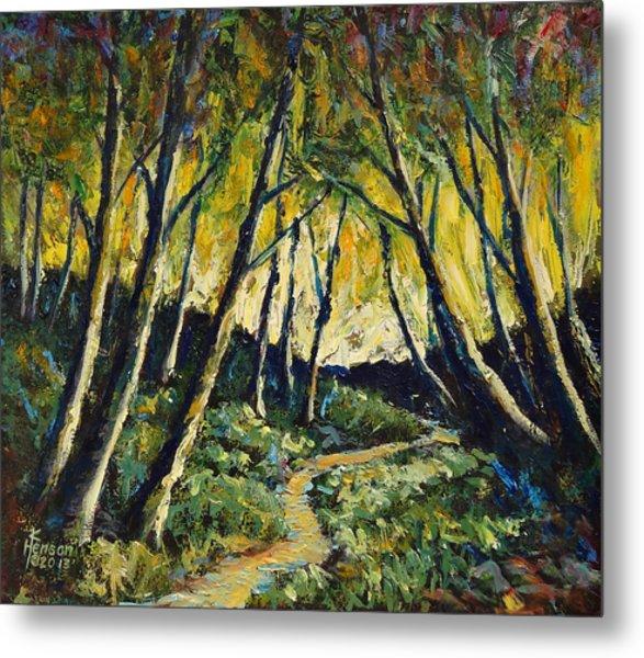 Alder Path Sunset Metal Print