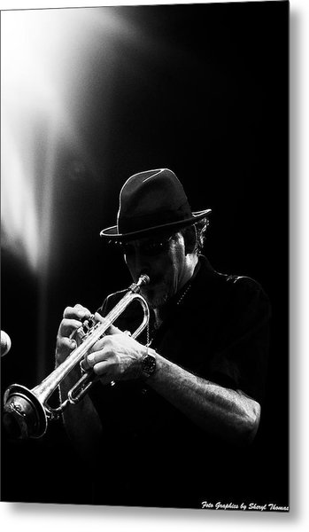 All That Jazz Metal Print by Sheryl Thomas