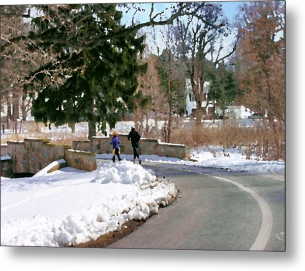 Allentown Pa Trexler Park Winter Exercise Metal Print