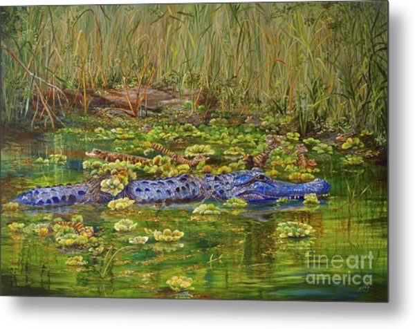 Alligator Pod Metal Print