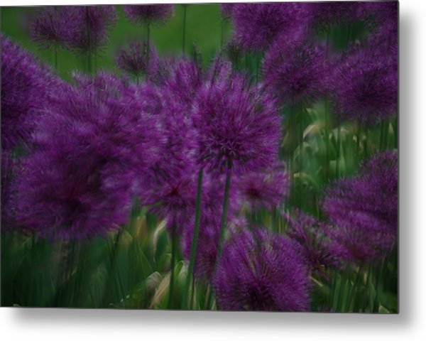Allium Double Exposure Metal Print