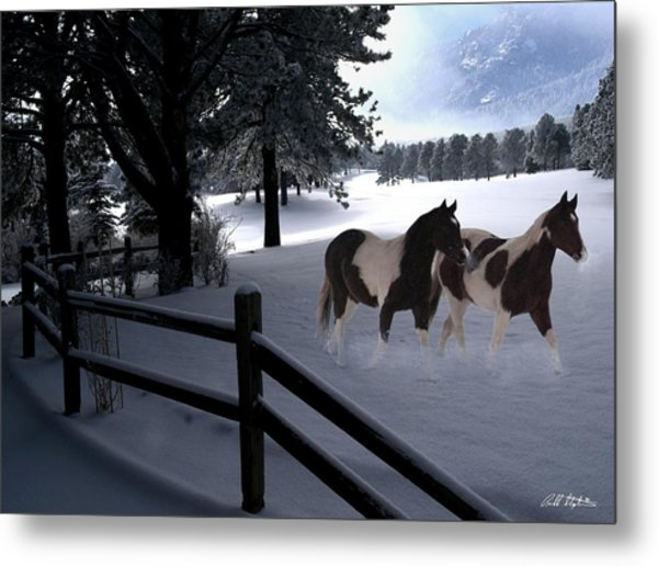 Almost Christmas Metal Print