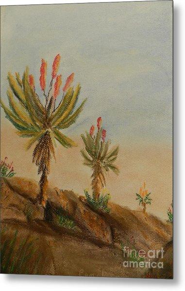 Aloes Metal Print