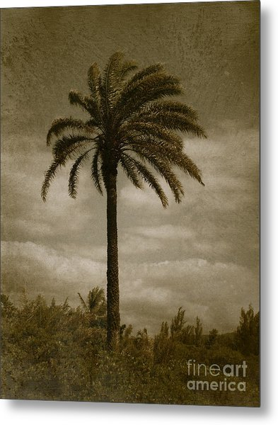 Aloha Palm - No.2047 Metal Print