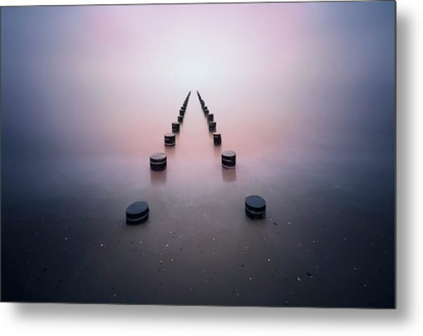 Alone In The Silence Metal Print by Srecko Jubic