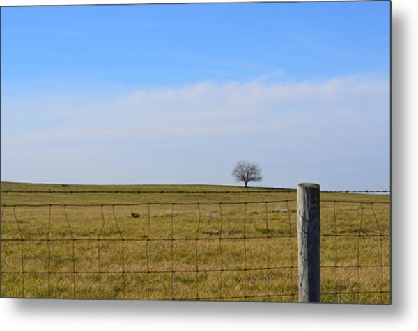 Alone Or Standing Out Metal Print