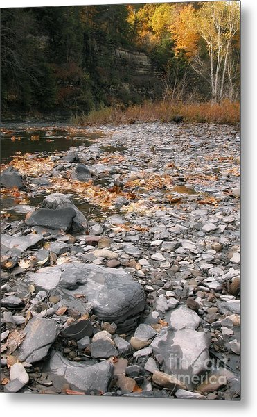 Along Eighteen Mile Creek Metal Print
