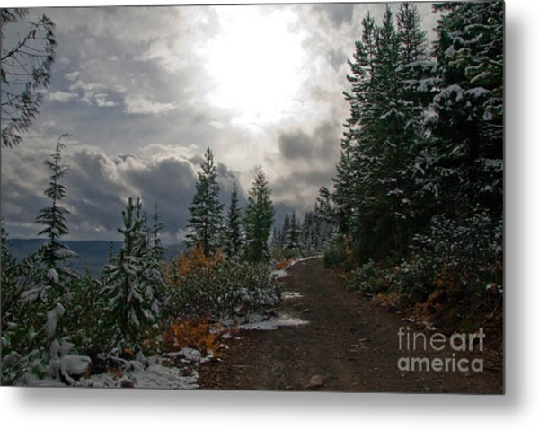 Along Ridge Road Metal Print by Cari Gesch