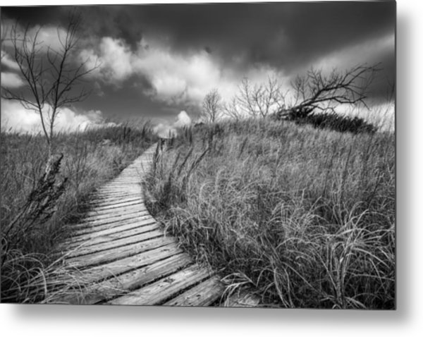 Along The Boardwalk Metal Print
