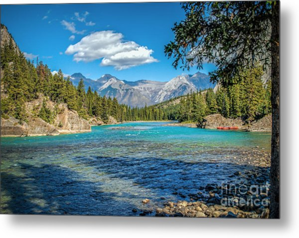 Along The Bow River Metal Print