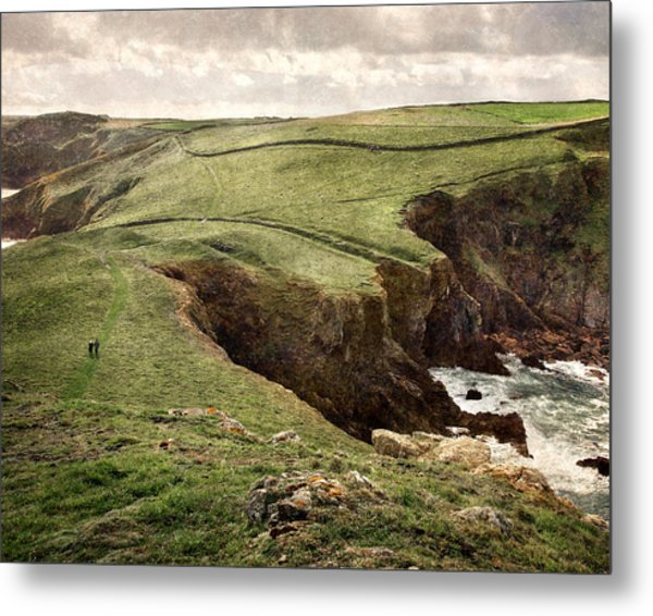 Along The Coast Path Metal Print