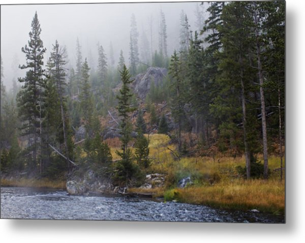 Along The Gibbon In Fall Metal Print