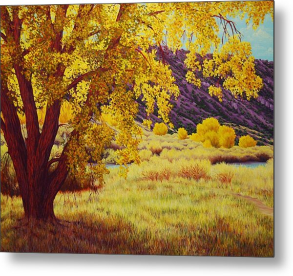 Along The Rio Grande Metal Print