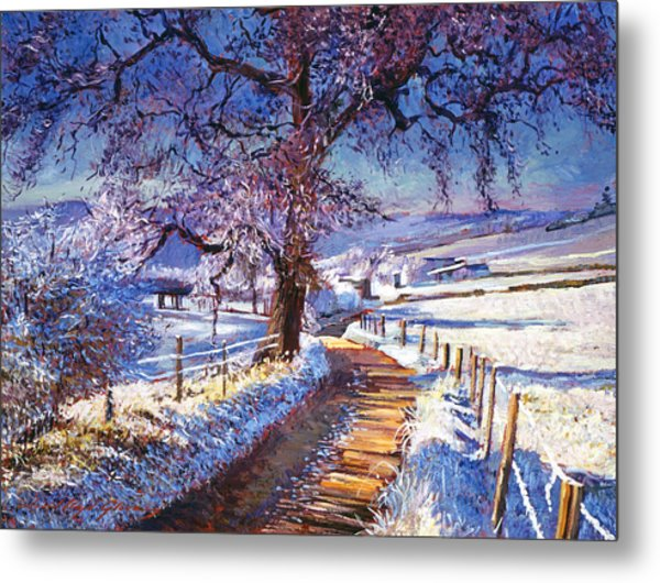 Along The Snow Lined Road Metal Print by David Lloyd Glover
