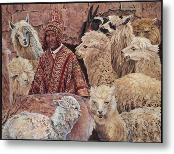 Alpaca Shepherd Metal Print
