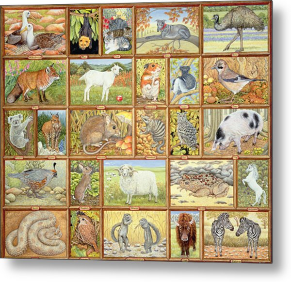 Alphabetical Animals Metal Print