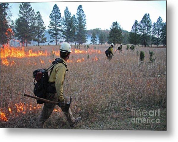 Alpine Hotshots Ignite Norbeck Prescribed Fire Metal Print