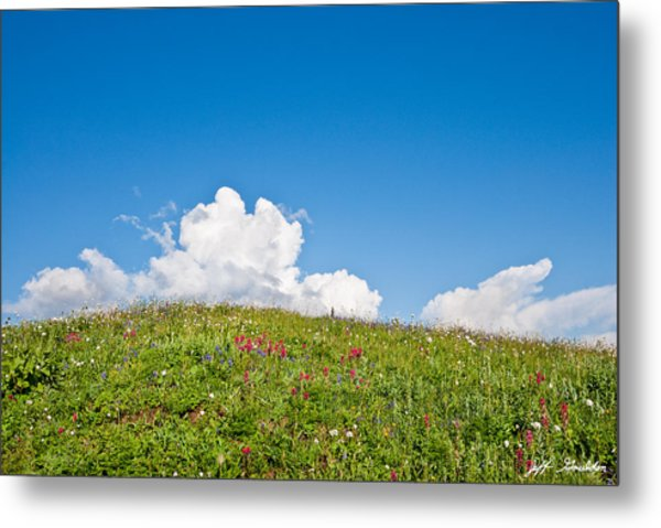 Alpine Meadow And Cloud Formation Metal Print