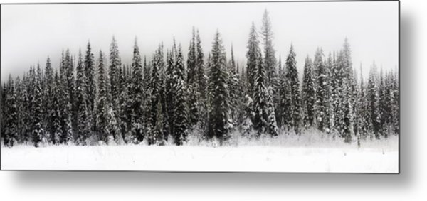 Winter Scene // Whitefish, Montana  Metal Print