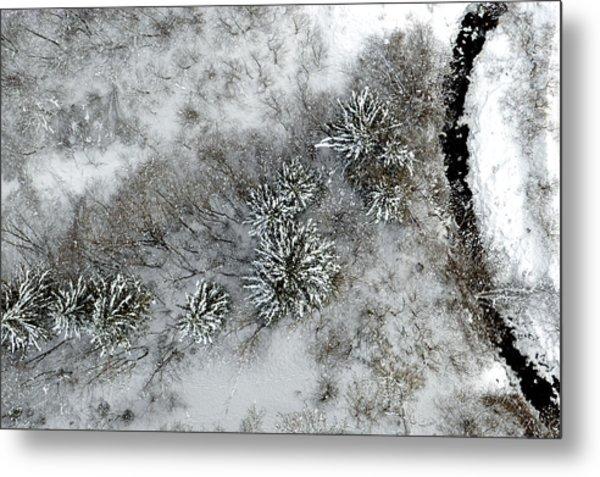 Alpine Snow Trees Metal Print by Stephen Richards