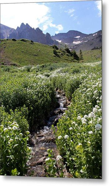 Alpine Stream Metal Print